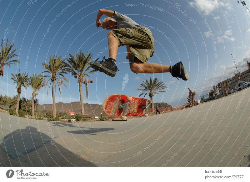 Threesixtyflip Jugendliche Ferien & Urlaub & Reisen Meer Freude Spielen Stil Luft Park braun Insel Lifestyle Asphalt Skateboarding Palme trendy