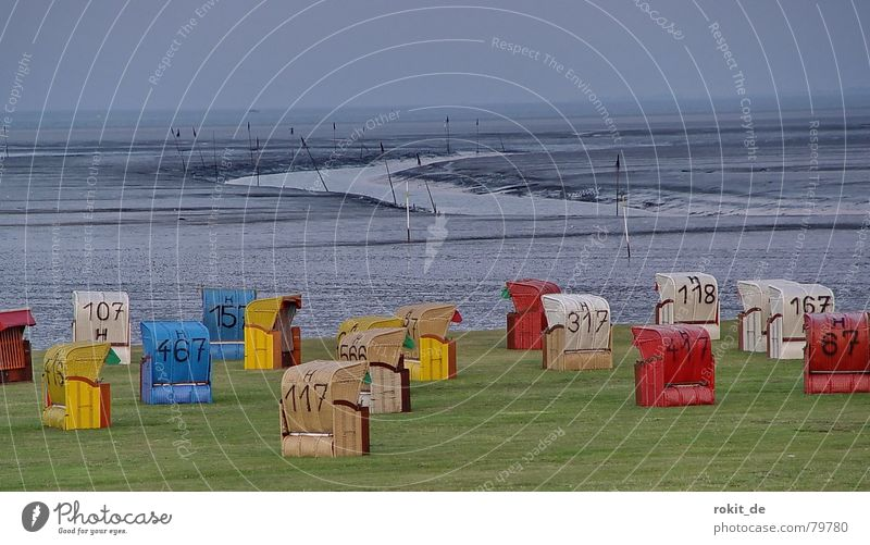 Körbchengröße??? Wasser Meer grün blau rot Sommer Strand Ferien & Urlaub & Reisen ruhig Einsamkeit gelb Ferne Erholung Wiese grau Küste