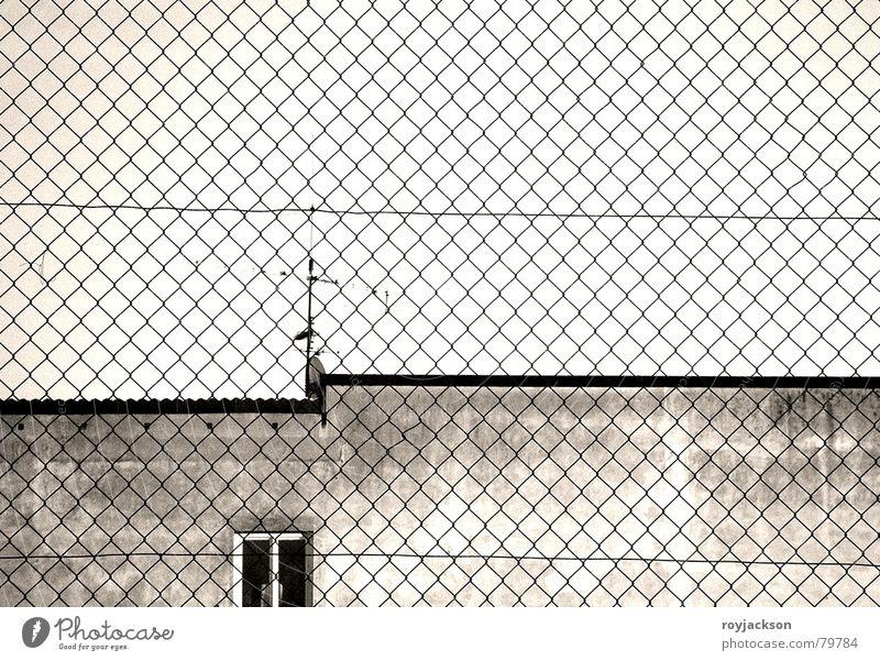 constrictiv sight Himmel Fenster Wand Traurigkeit Herbst Mauer Gebäude grau Glas gefährlich bedrohlich Baustelle Trauer Bauwerk Paradies Zaun