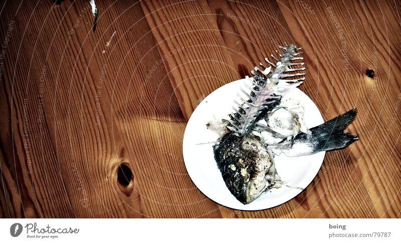 Schönheitsgymnastik für große Frauen Küste See frisch Ernährung Fisch Kochen & Garen & Backen verfallen Gastronomie Nordsee Ostsee Bucht Restaurant Angeln