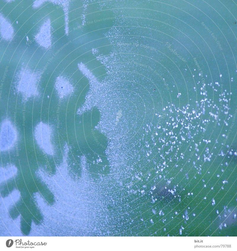 LINAS STERN blau Weihnachten & Advent Farbe Winter kalt Fenster Feste & Feiern Eis Glas Dekoration & Verzierung Frost Stern (Symbol) Kitsch gefroren türkis