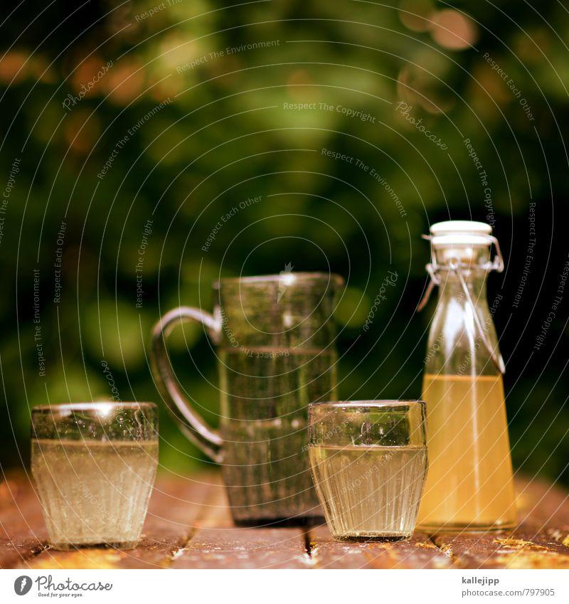 so schmeckt der sommer Getränk Erfrischungsgetränk Trinkwasser Saft Duft Holunderbusch holundersirup Sirup Glas Flasche Krug Tisch Moos Flüssigkeit Grünpflanze