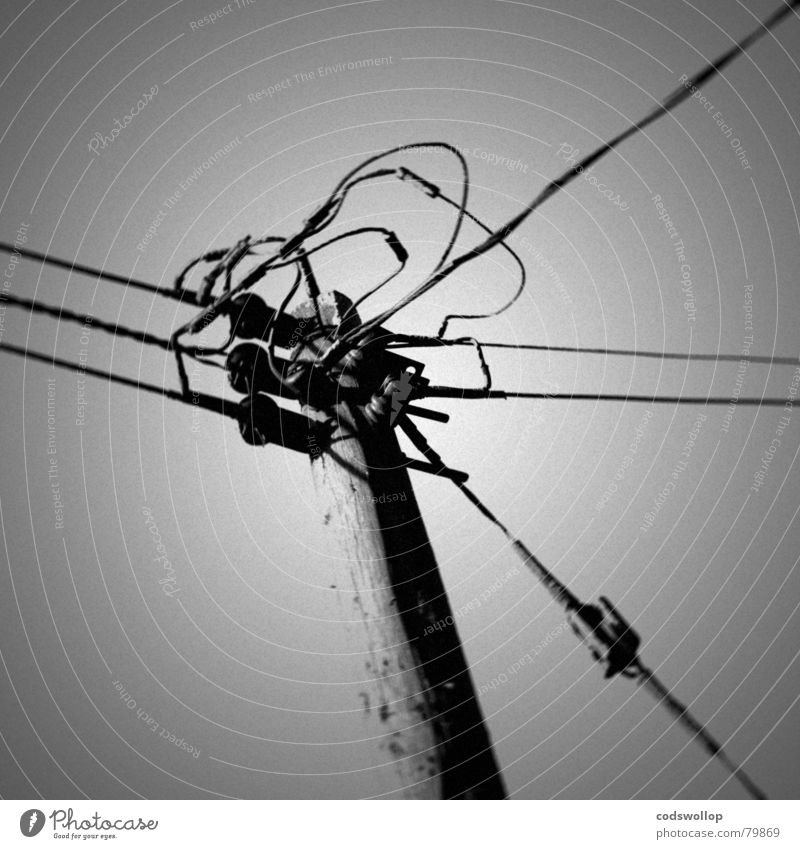 crossed wires weiß schwarz Kommunizieren Netzwerk Spannung Leitung Telefonmast Verbundenheit Chatten Fernschreiber Freizeichen