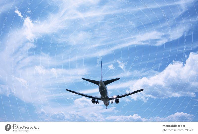 fliegen Himmel blau Ferien & Urlaub & Reisen Wolken Freiheit Luft Flugzeug Ausflug Luftverkehr Freizeit & Hobby Flughafen Maschine Paradies Pilot Düsenflugzeug