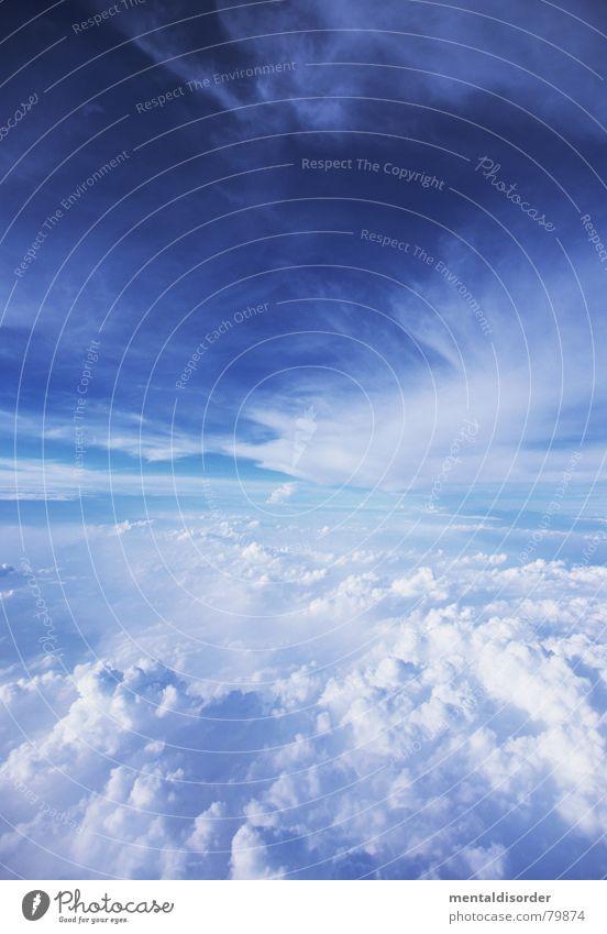 über den Wolken Himmel blau Ferien & Urlaub & Reisen Gefühle Freiheit Luft Flugzeug fliegen Ausflug Luftverkehr Flughafen Maschine Paradies Pilot