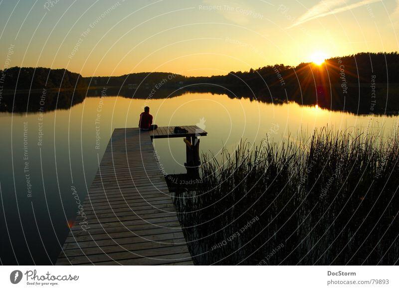 letzter Sonnenstrahl See Gewässer Sonnenuntergang ruhig Einsamkeit Zufriedenheit Sommer Erholung gelb Steg Schilfrohr Spiegel Ferien & Urlaub & Reisen Romantik