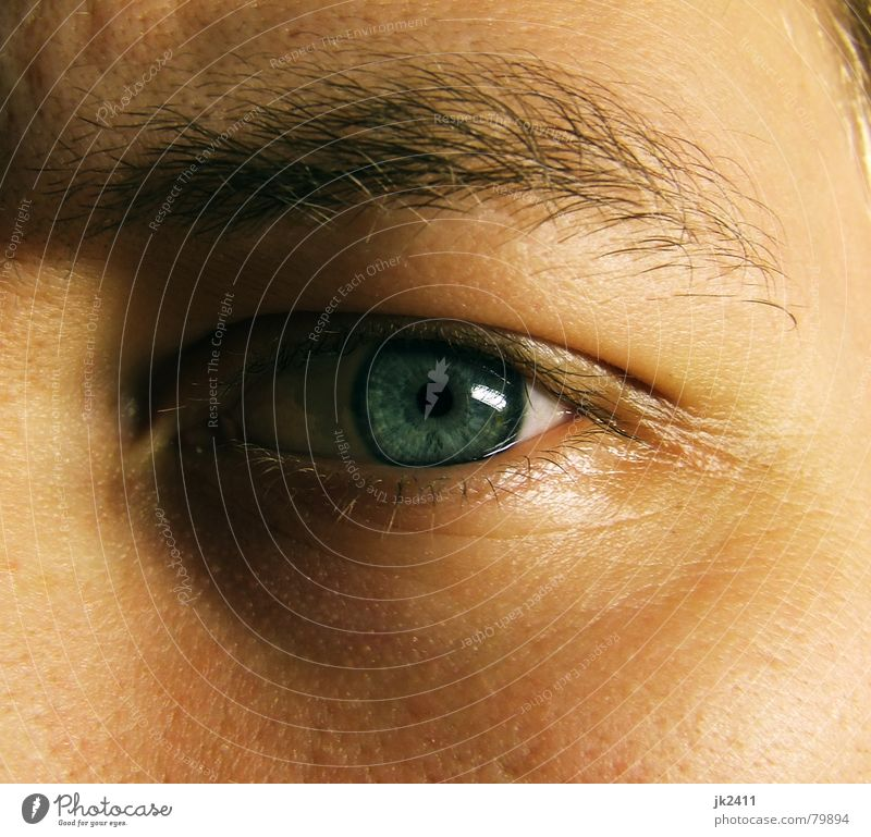 Augenblick 1 blau Gesicht nah Wimpern Augenbraue Pupille Regenbogenhaut Pore Augenfarbe