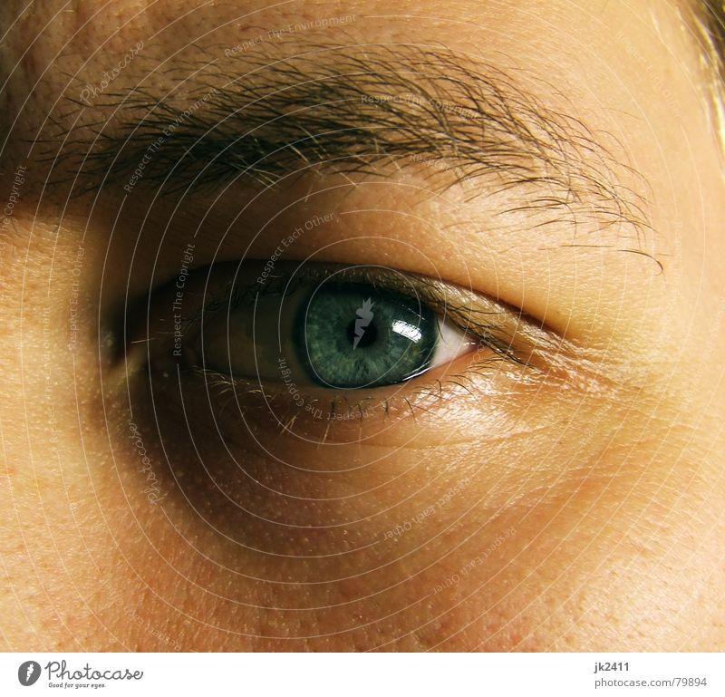 Augenblick 1 Gesicht nah blau Augenfarbe Wimpern Augenbraue Regenbogenhaut Pupille Nahaufnahme Pore Detailaufnahme Makroaufnahme Blick