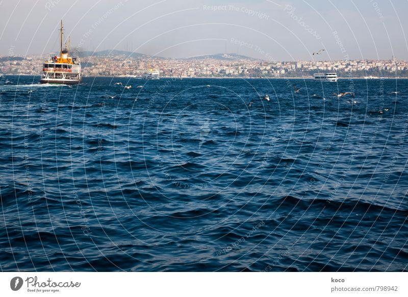 über den Bosporus... Ferien & Urlaub & Reisen blau weiß Wasser Sommer Meer Ferne schwarz Umwelt gelb Küste Kraft Wellen Verkehr Schönes Wetter Hafen