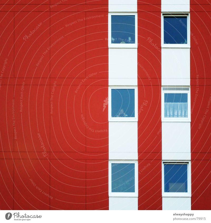 Heuschrecken weiß rot Einsamkeit Haus Fenster Feste & Feiern Wohnung trist Trauer Verzweiflung Geometrie Flucht Gardine Erinnerung vergessen heimwärts