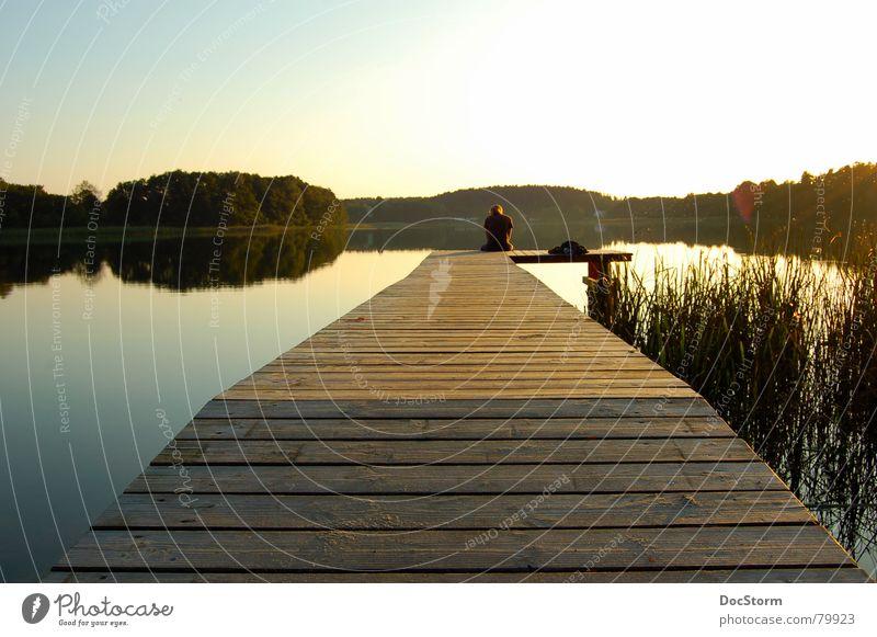 relaxen... See Gewässer Sonnenuntergang ruhig Einsamkeit Zufriedenheit Sommer Erholung gelb Steg Schilfrohr Spiegel Ferien & Urlaub & Reisen Romantik