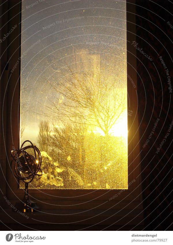 Weltkugel mit Sonnenuntergang Baum gelb Fenster dreckig gold fantastisch Globus Abenddämmerung himmlisch Schaufenster Jalousie beeindruckend Fensterladen