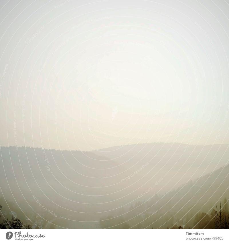 ! trash! | Sehstörung Natur Baum Landschaft Wald Umwelt Gefühle hell Schönes Wetter Hügel Stimmungsbild