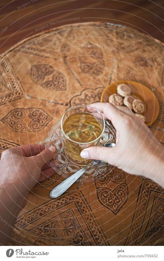 tee trinken Hand Gesunde Ernährung feminin Stil natürlich Gesundheit Lebensmittel Wohnung Häusliches Leben Glas frisch ästhetisch Getränk trinken gut lecker