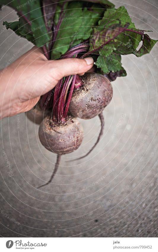 rote bete Lebensmittel Gemüse Rote Beete Ernährung Bioprodukte Vegetarische Ernährung Gesunde Ernährung feminin Hand festhalten einfach frisch Gesundheit gut