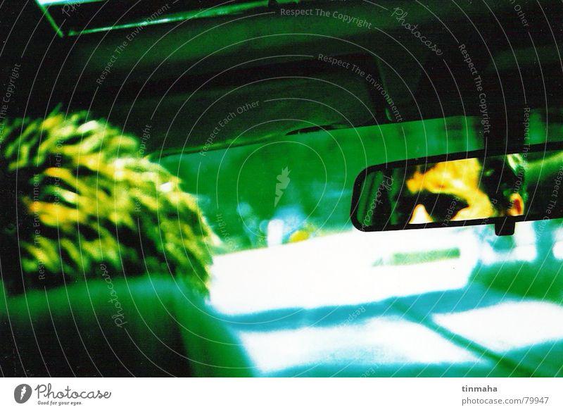 driving the car Bewegung fahren Rückspiegel Reflexion & Spiegelung Fahrer Einsamkeit grün gelb Landstraße Perspektive PKW Straßenverkehr verloren Wagen Fahrweg
