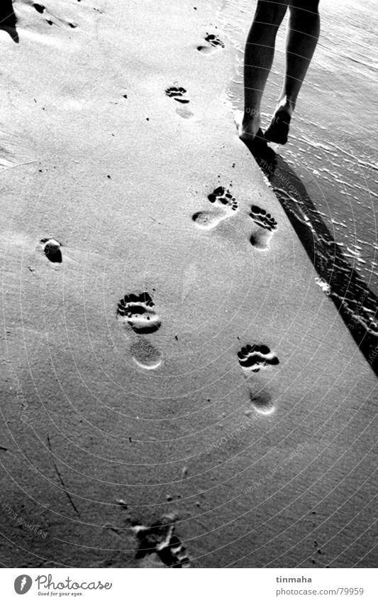 spuren hinterlassen Meerwasser Strand Ferien & Urlaub & Reisen Fußspur Wege & Pfade Erholung Badestelle Freizeit & Hobby möglich mehrere Sandbank Freiheit Küste