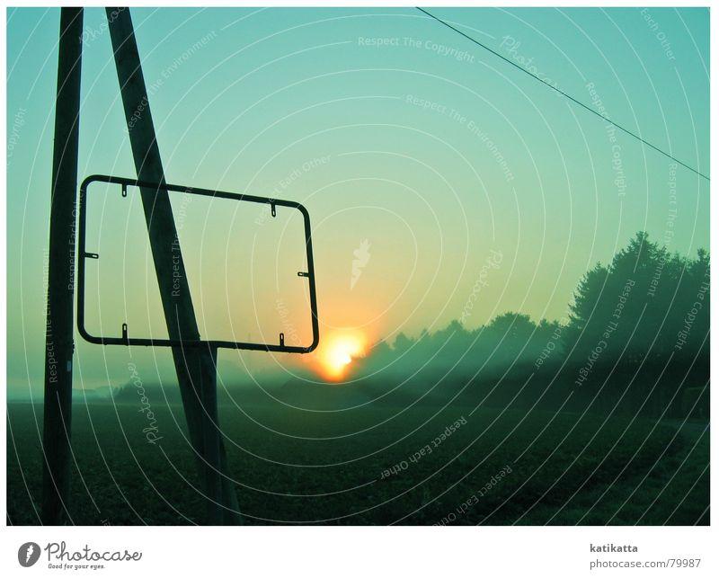 morgensonnenschein gelb Nebel Sonnenaufgang türkis Tau Strommast Sommer Feld Stimmung Baum Sonnenuntergang grün Himmelskörper & Weltall Abend