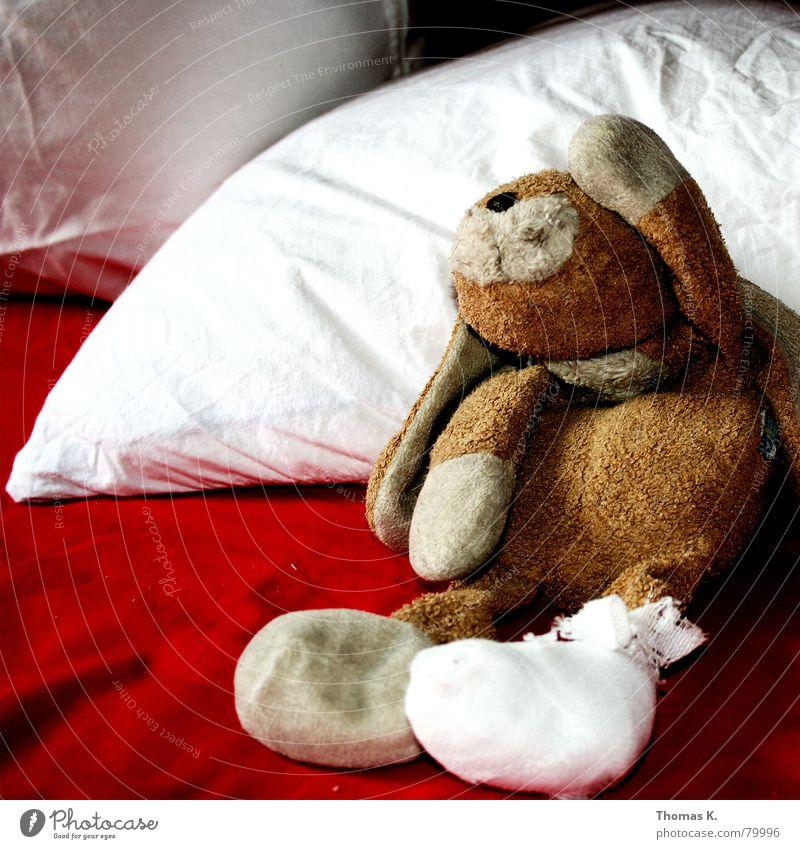 Freizeitunfall (oder: TIERSCHUTZ wird bei mir groß geschrieben) rot Tier Traurigkeit Fuß braun Kindheit Wachstum Trauer Stoff weich Falte Krankheit Schmerz Krankenhaus Hase & Kaninchen Verzweiflung