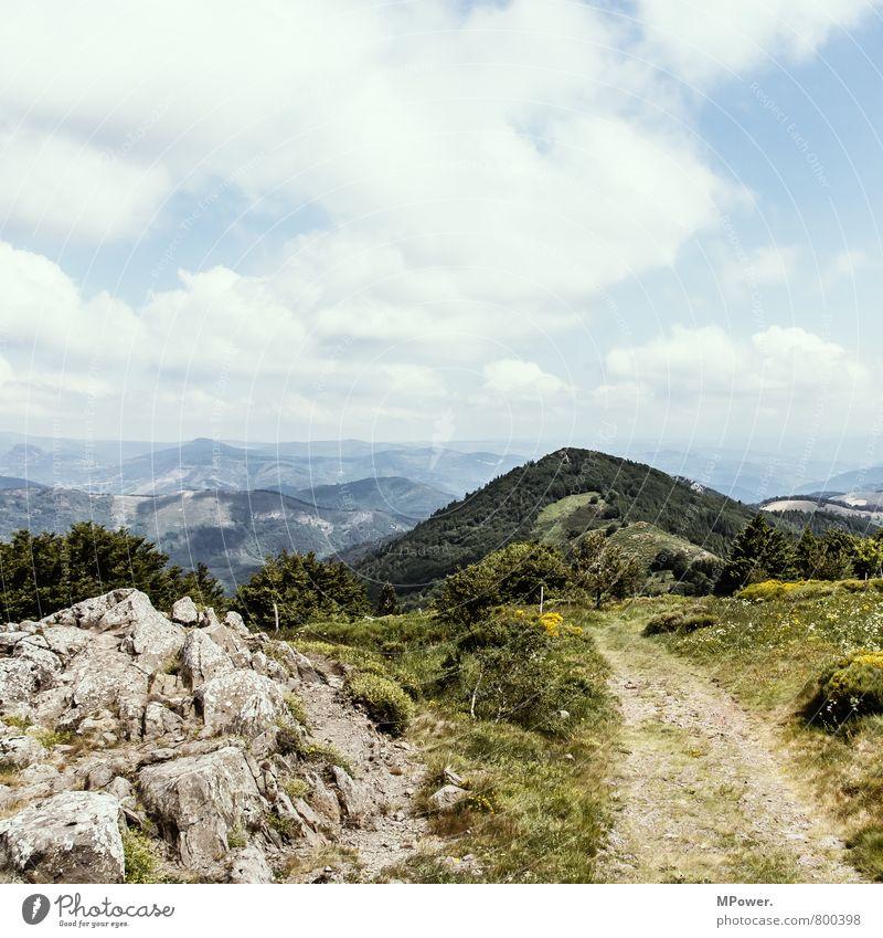 rhone-alpes Landschaft Wald Umwelt Berge u. Gebirge Wege & Pfade Felsen Wind hoch Schönes Wetter Fußweg Hügel Alpen Frankreich