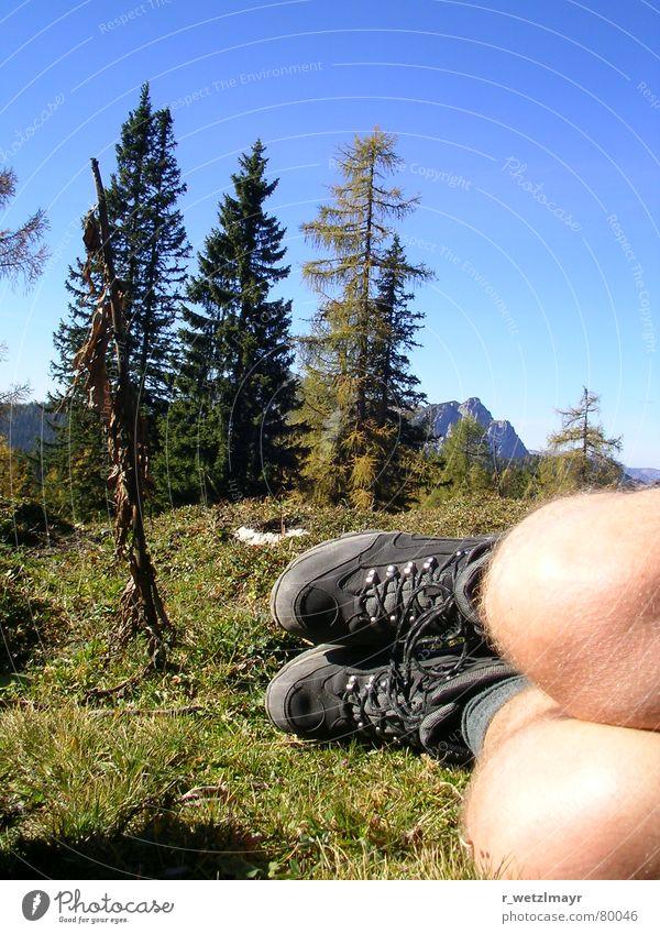 Wandern und Bergsteigen: These boots... Mensch Himmel Natur Jugendliche blau grün Baum Ferien & Urlaub & Reisen Pflanze ruhig Wald Ferne Umwelt Landschaft Wiese