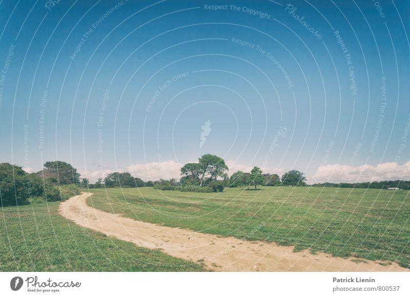 Ab ins Grüne Himmel Natur Ferien & Urlaub & Reisen Pflanze Sommer Sonne Baum Erholung Landschaft Wolken Ferne Umwelt Wiese Freiheit Park Zufriedenheit