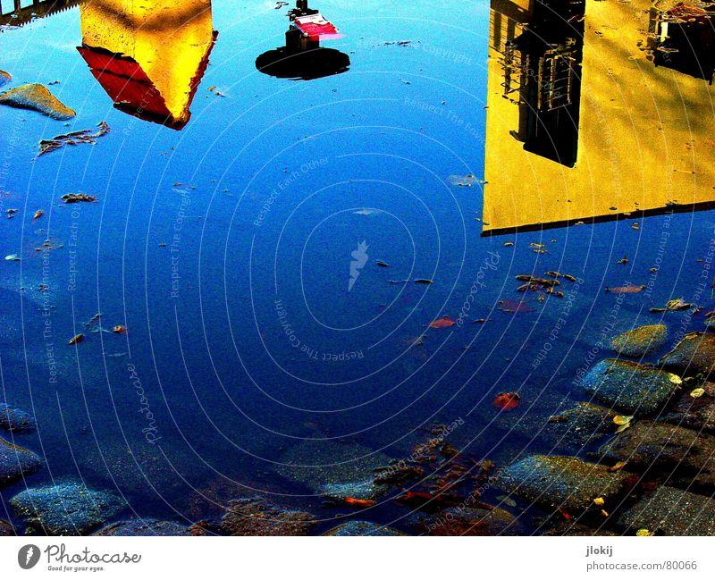 Where the fuck is Nemo??? Dachziegel Schachtel gelb Kopfsteinpflaster Gebäude Haus Zaun Blatt Pfütze eckig Licht Herbst kalt jlokij day puddle blau Turm Tür