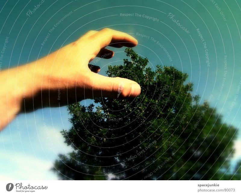 Angriff der Riesenhand (2) Himmel Hand Baum Freude träumen gefährlich bedrohlich Pfote Surrealismus Angriff