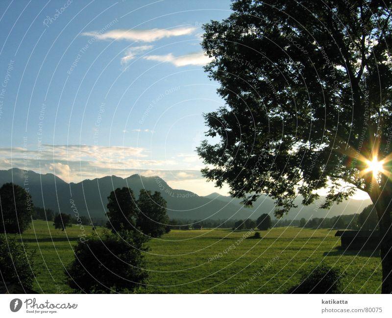 mein urlaub. Natur Himmel Baum Sonne grün blau Sommer Ferien & Urlaub & Reisen ruhig Wiese Berge u. Gebirge Regen Landschaft Nebel Alpen Gewitter