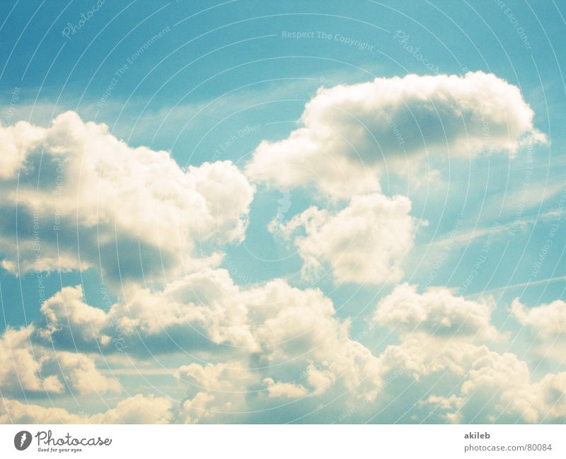 Im Himmel Wolken Hoffnung Luft Freundlichkeit Wetterdienst Meteorologie schön blau Sonne Klima Freiheit fliegen Schönes Wetter