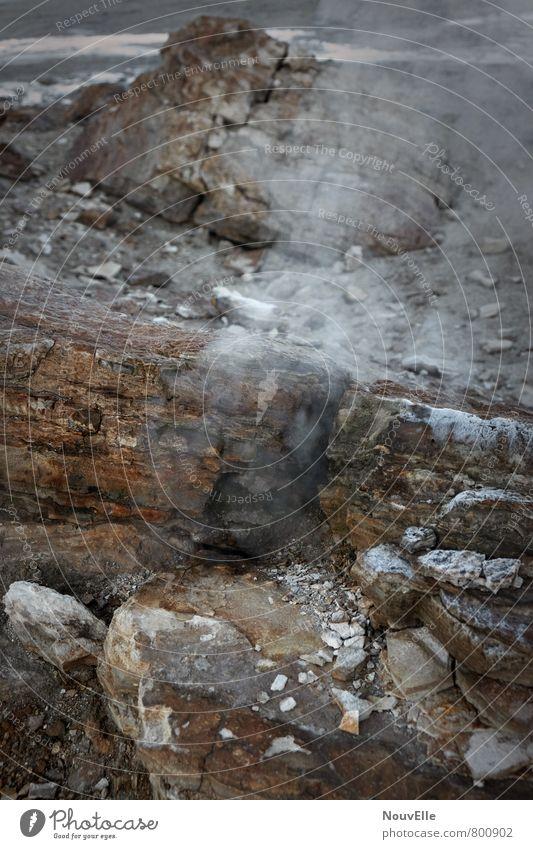 Geysers de Tatio I Umwelt Natur Landschaft Urelemente Erde Feuer Luft Wärme Vulkan außergewöhnlich Duft dunkel kalt natürlich schön Geysir Farbfoto
