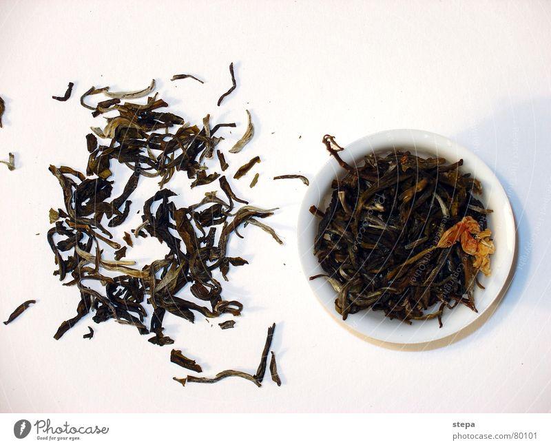 jasmin tee weiß Tee authentisch China Teepflanze Originalität Chinesisch ursprünglich Dose Jasmin Teedose Teekultur Grüner Tee