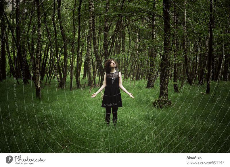 Erleuchtung auf der Lichtung Natur Jugendliche Pflanze schön grün Baum Junge Frau 18-30 Jahre Wald Erwachsene Gras Religion & Glaube träumen Körper Idylle