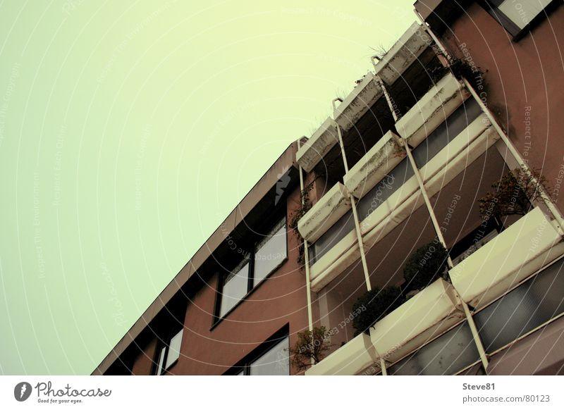 Green Himmel vs. Brown Haus grün Stadt Leben Fenster Gebäude braun Design Horizont Dinge Balkon Schönes Wetter