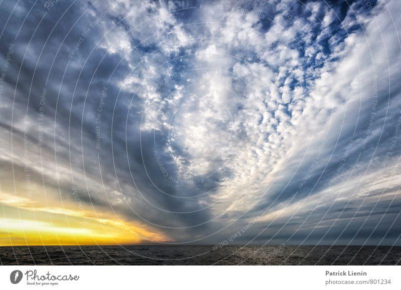 Himmel Natur Ferien & Urlaub & Reisen Pflanze Sommer Meer Erholung Landschaft ruhig Wolken Strand Umwelt Küste Deutschland Wetter Erde