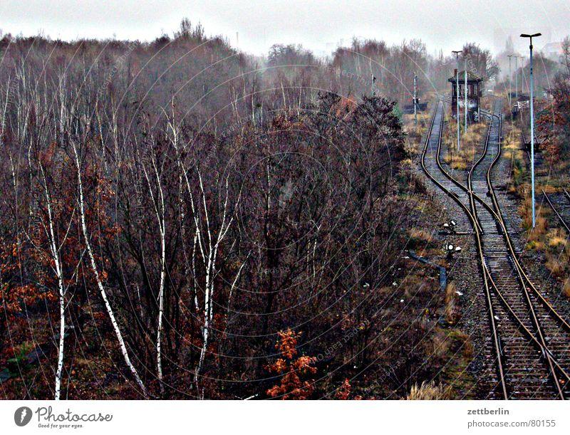 Silvester Wald Traurigkeit gehen Nebel Verkehr Eisenbahn Trauer Güterverkehr & Logistik Gleise Station Laterne Umzug (Wohnungswechsel) Bahnhof Verzweiflung