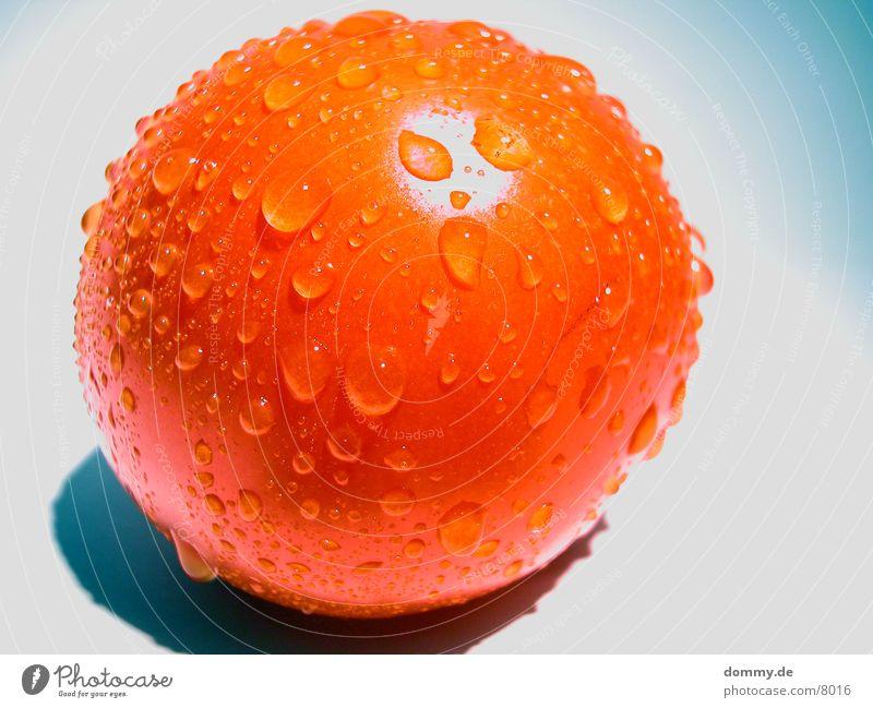 schwitzende Tomate rot feucht Gesundheit Wasser Perle Makroaufnahme kaz