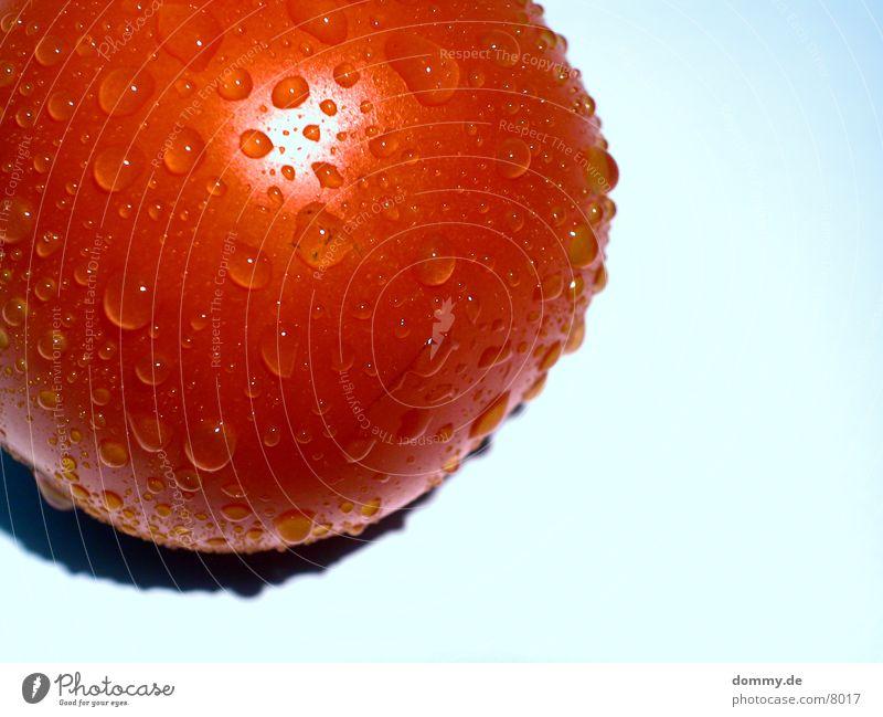 schwitzende Tomate 2 rot feucht Gesundheit Wasser Perle Makroaufnahme kaz