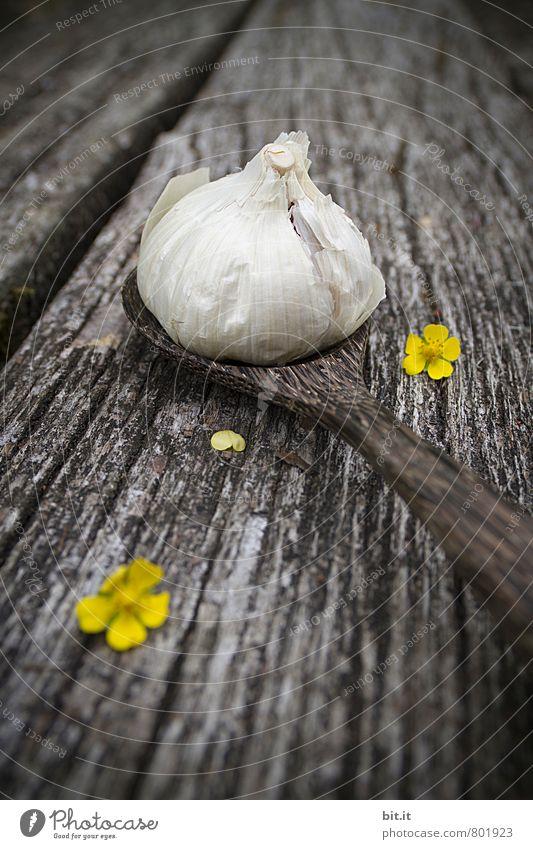 Chnobli Lebensmittel Kräuter & Gewürze Ernährung Bioprodukte Vegetarische Ernährung Italienische Küche Löffel Lifestyle Gesundheit Gesundheitswesen