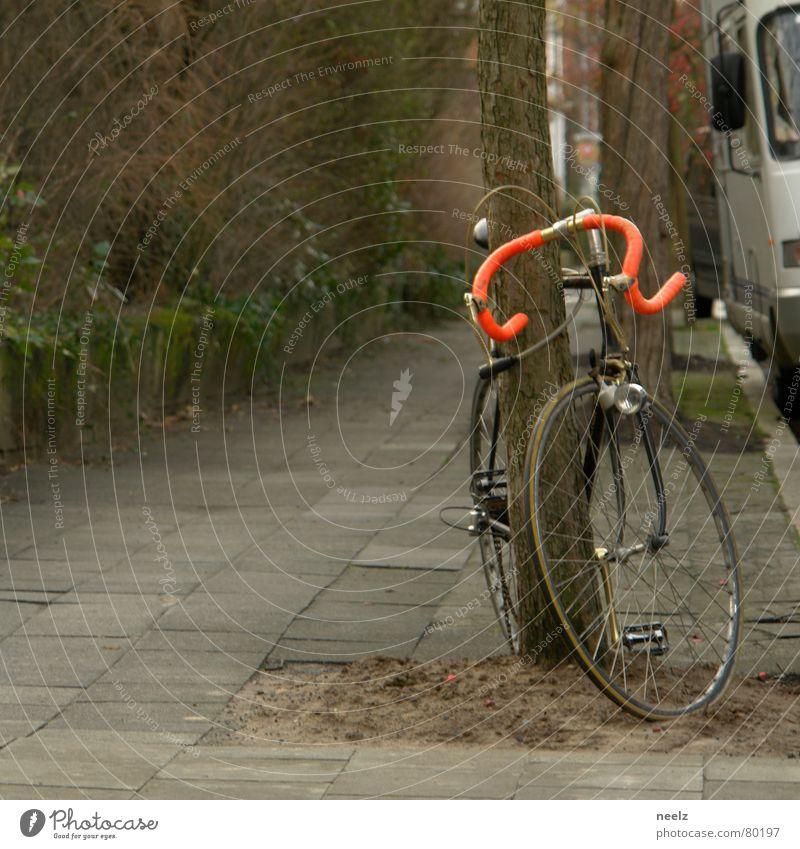 | ne runde drehn | Zweck Fahrrad Rennrad Sport lässig Hirsche Reifen trimm dich ausapern Fahrradlenker Wege & Pfade