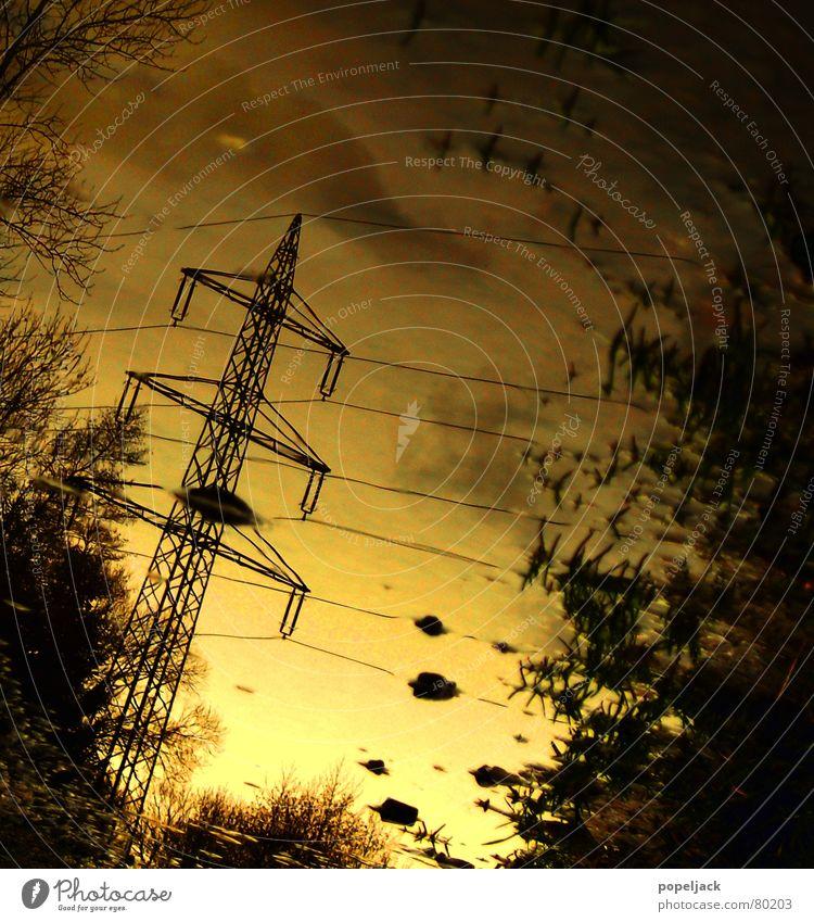 Yellow Strom Wasser Himmel Baum grün Winter gelb Herbst Wiese Gras Regen Wetter nass Energiewirtschaft Elektrizität Technik & Technologie Rasen