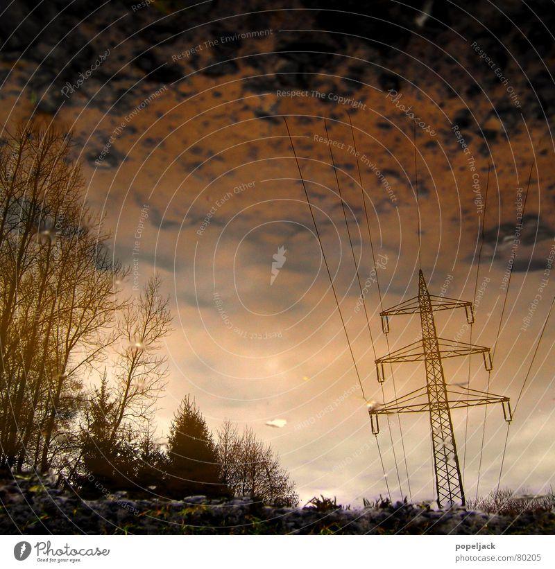krümelsky Elektrizität Winter Pfütze nass Gras Reflexion & Spiegelung Baum grün Himmel Paradies Stromausfall Wiese Grünfläche Hochspannungsleitung
