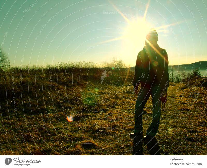 Am Weihnachtsmorgen Frau Natur Himmel Sonne grün Winter kalt Wiese Stimmung Beleuchtung Aktion Spaziergang Klima Idylle Weide Schönes Wetter