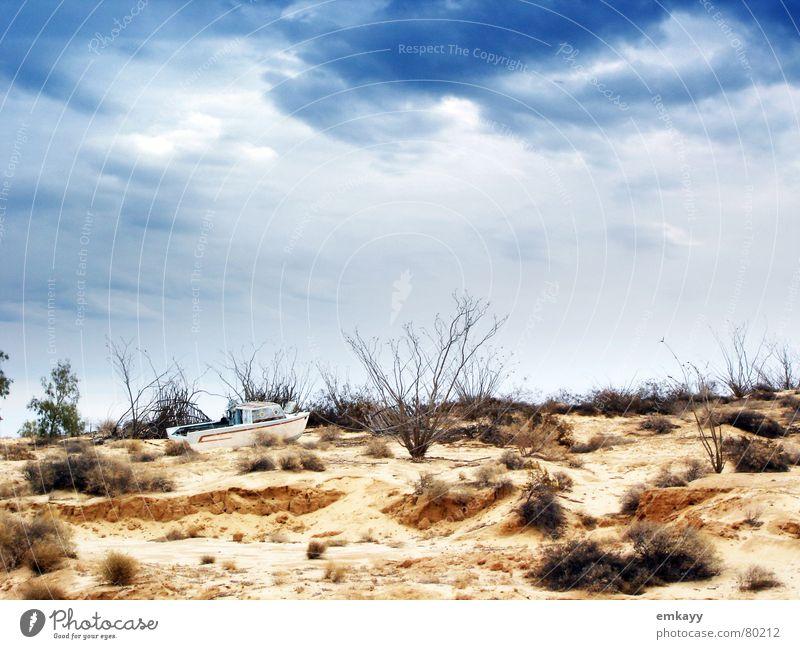 Gestrandet Himmel Strand Sand Landschaft Wasserfahrzeug Stimmung Wellen Küste Wind Klima Wüste Sturm Unwetter Mexiko Ödland hilflos