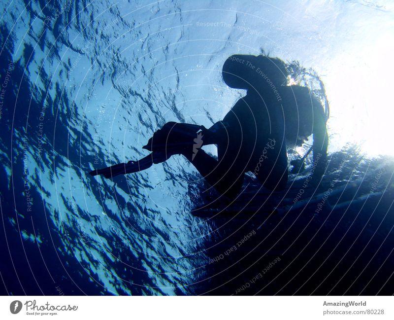 Surface Wassersport Unendlichkeit Taucher tauchen Meer Ägypten Oberfläche wiederkommen Unterwasseraufnahme blau tief Freiheit surface