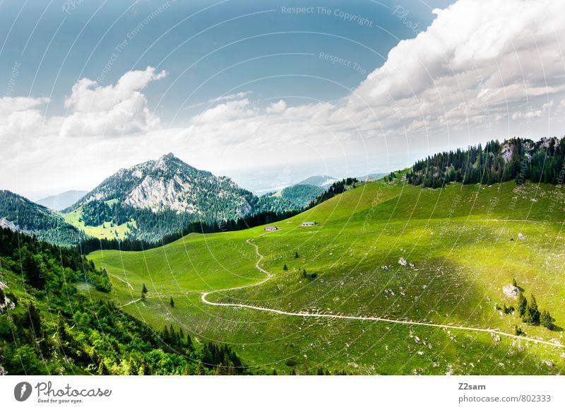 HEIMAT wandern Umwelt Natur Landschaft Himmel Wolken Sommer Wiese Wald Alpen Berge u. Gebirge ästhetisch nachhaltig natürlich blau grün ruhig Einsamkeit