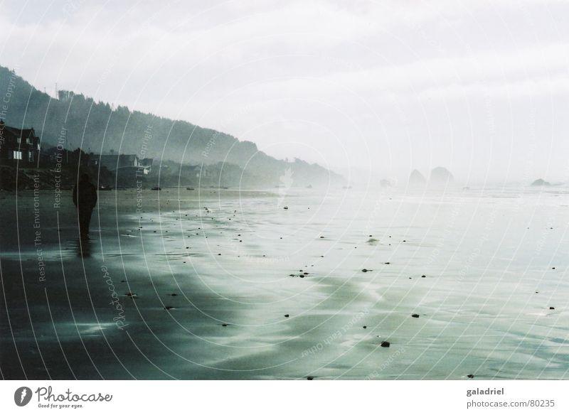 ins licht Wasser Meer Strand hell Küste gehen USA Spaziergang Frieden leicht Leichtigkeit Oregon