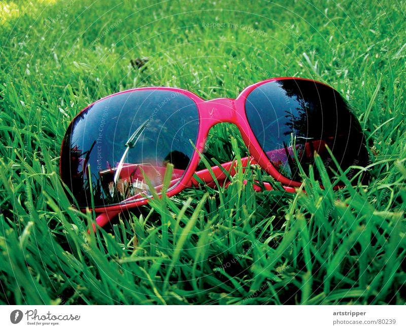 redrosefornose Sonnenbad Sonnenbrille Sommer Langeweile Freizeit & Hobby Wiese Durchblick Gras Brille genießen Ferien & Urlaub & Reisen Erholung Grünfläche