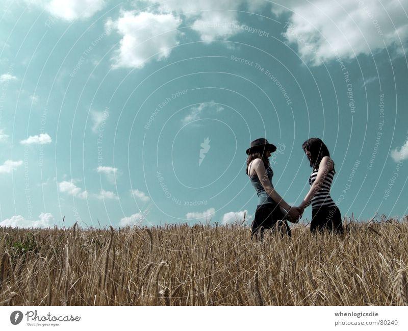 april fools Himmel Sonne Freude Liebe Wolken Feld Getreide