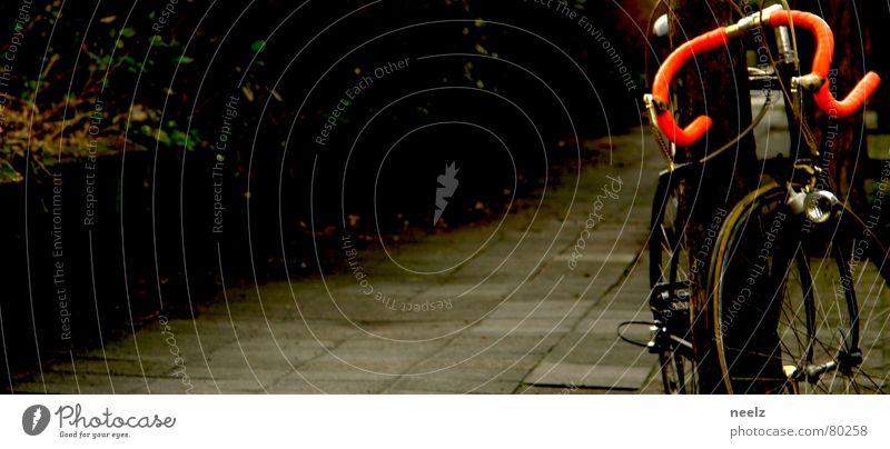 | nochma ne runde drehn | Fahrrad Baum Rennrad Hirsche Leben Bewegung Zweck Einsamkeit in form Fahrradlenker mobilisieren